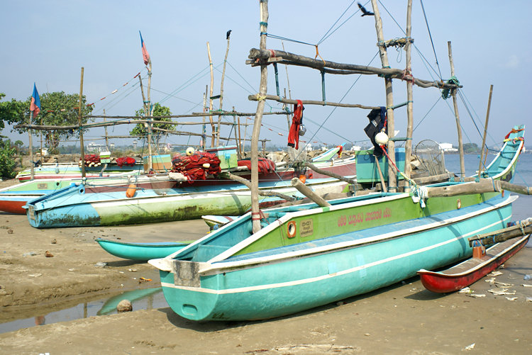 oruwa catamaran fishing boat