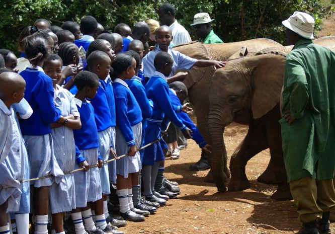 http://travel-tips.s3-website-eu-west-1.amazonaws.com/holiday-travel-tips-Kenya-hotel-Africa-safari-elephant-David-Sheldrick-Wildlife-Trust.jpg