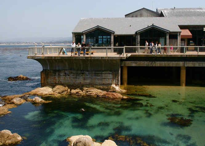 Monterey Aquarium Near San Francisco California Usa Travel